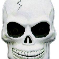 Halloween y calaveras, que mezcla tan aterradoramente apetecible. Disfruta de tu fiesta favorita con los artículos de calaveras más terroríficos.