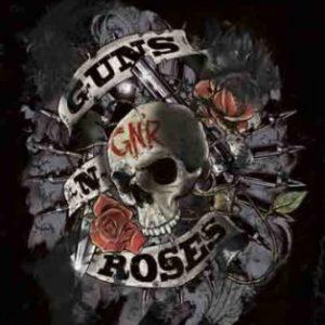 poster de calavera de guns n roses