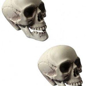 calaveras de decoracion para halloween